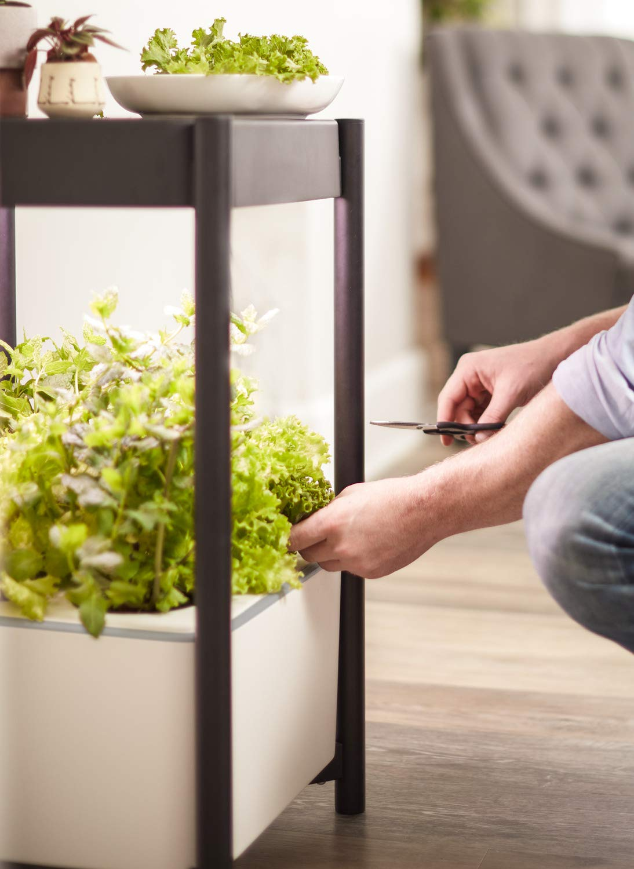 Miracle-Gro Twelve Hydroponic Indoor Growing System